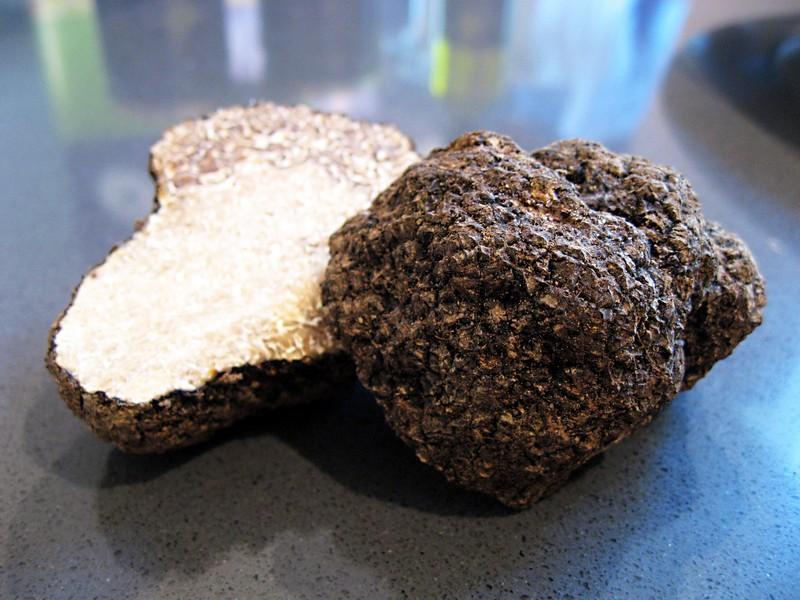 Verse Zwarte truffel